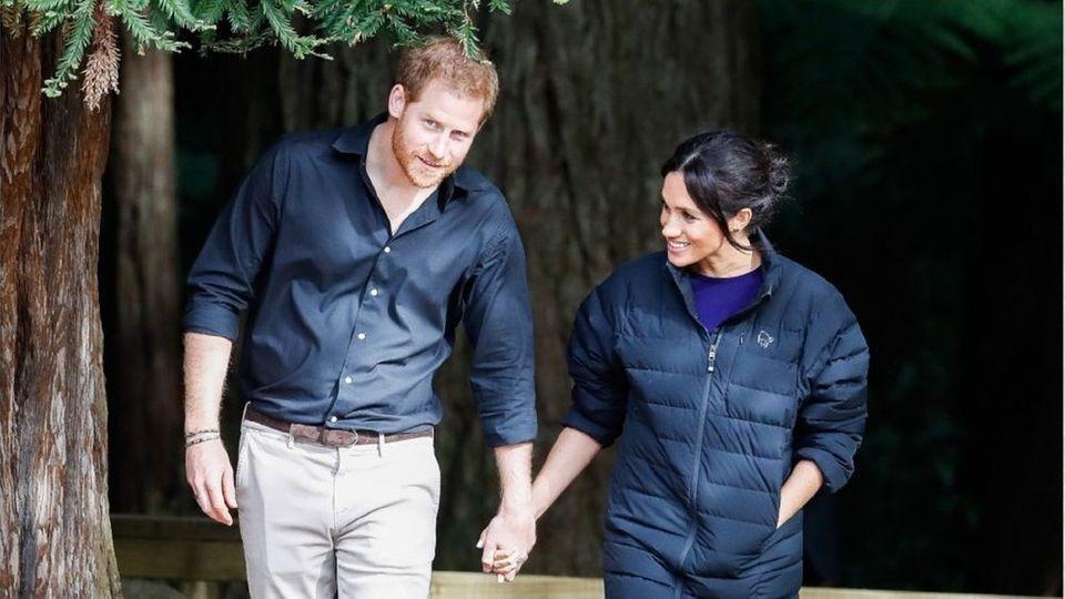 Umstrittene Tierfotos: Prinz Harry scheitert mit Beschwerde