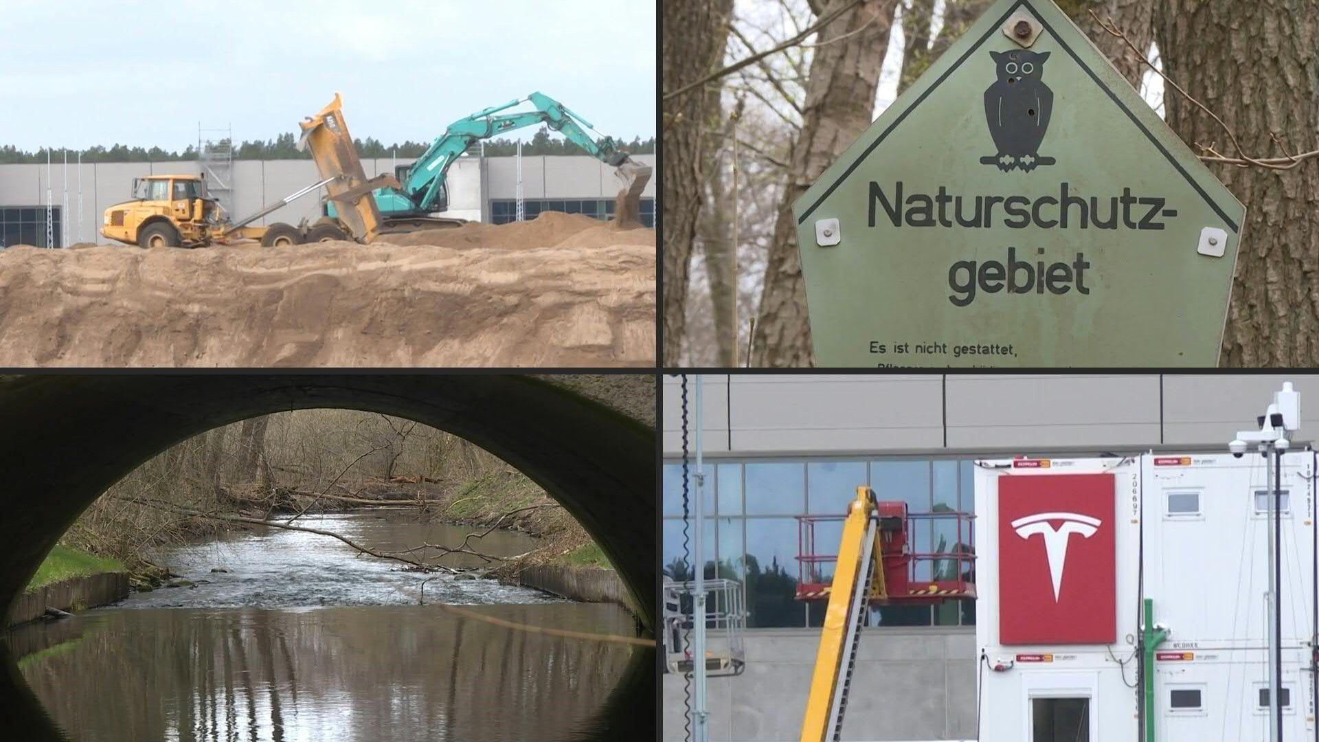 Widerstand in Brandenburg: Umweltaktivisten wehren sich gegen Tesla